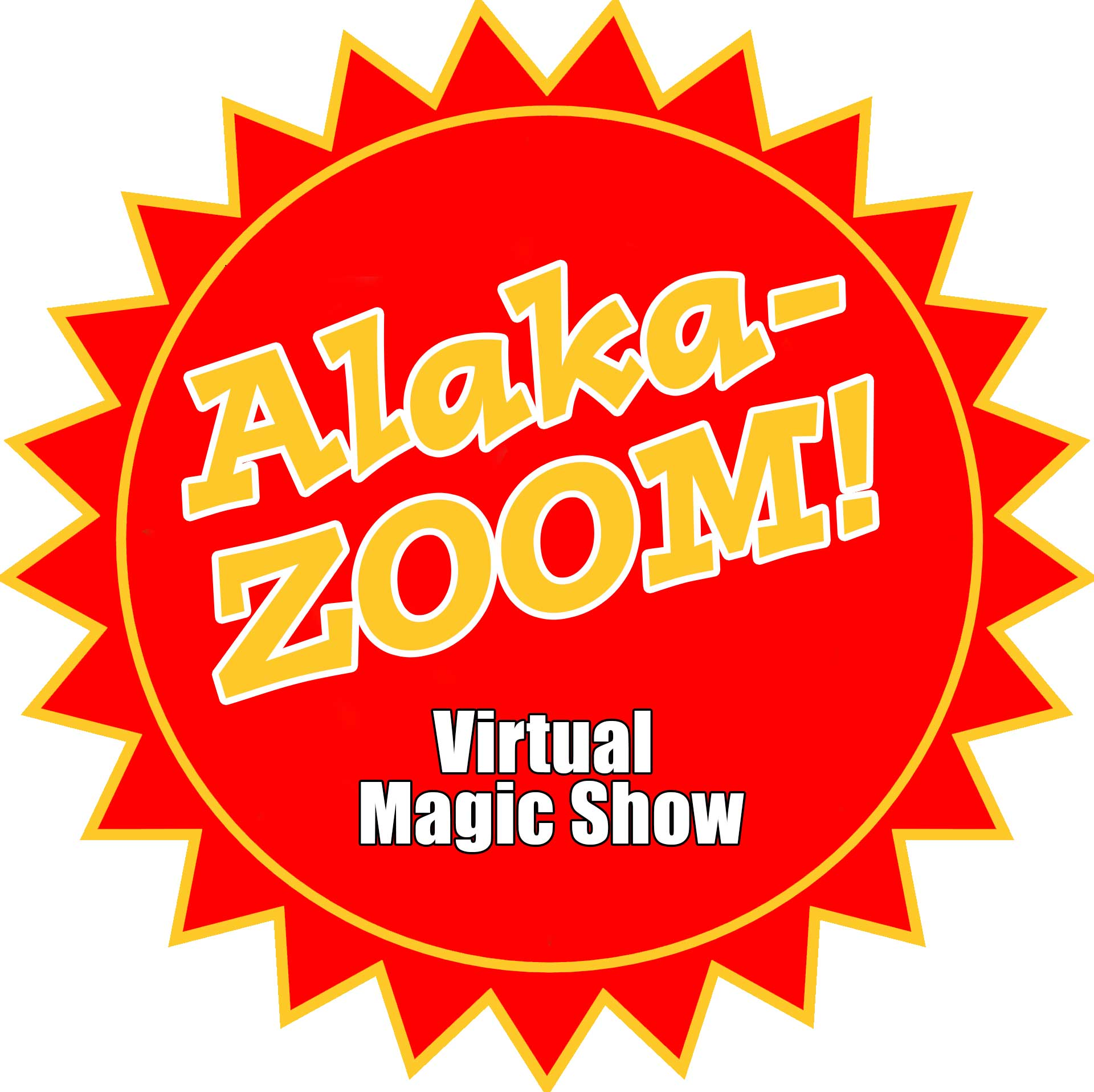 virtual birthday magic show